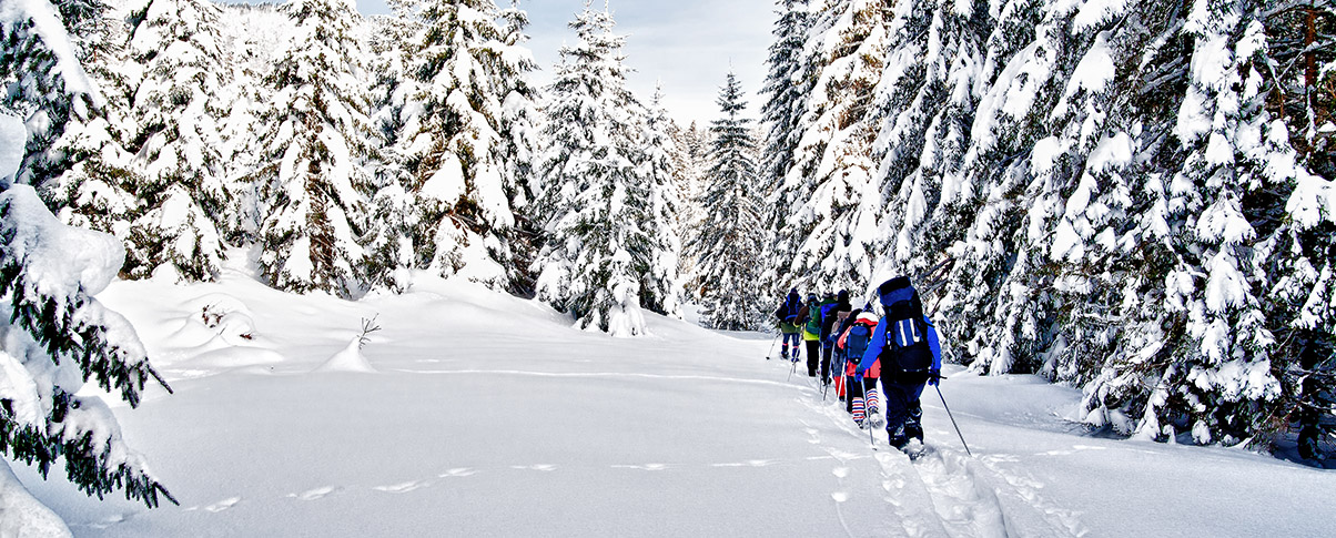 slider_0038_bigstock-Group-of-snowshoe-hiker-29450600